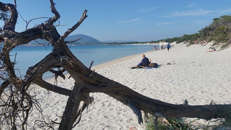 Spiaggia maria pia alghero al mare anche il 1 novembre for Ibiza a maggio si fa il bagno
