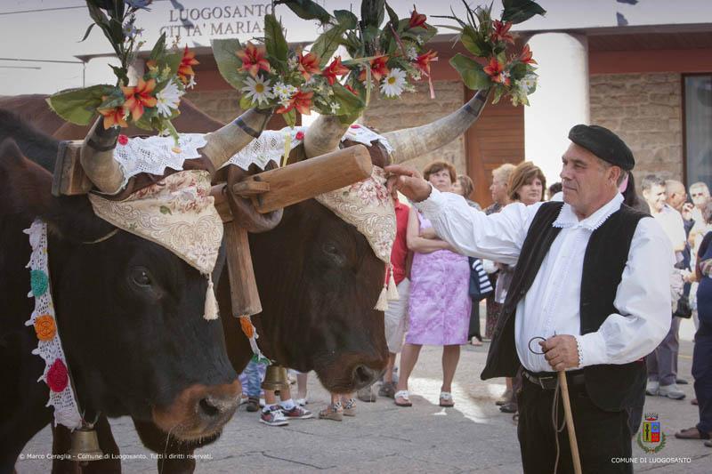 festa-manna-luogosanto-processione
